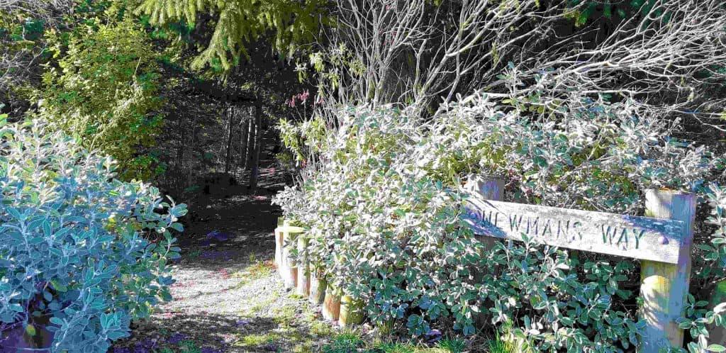Newman's Way sign and path at Garston.