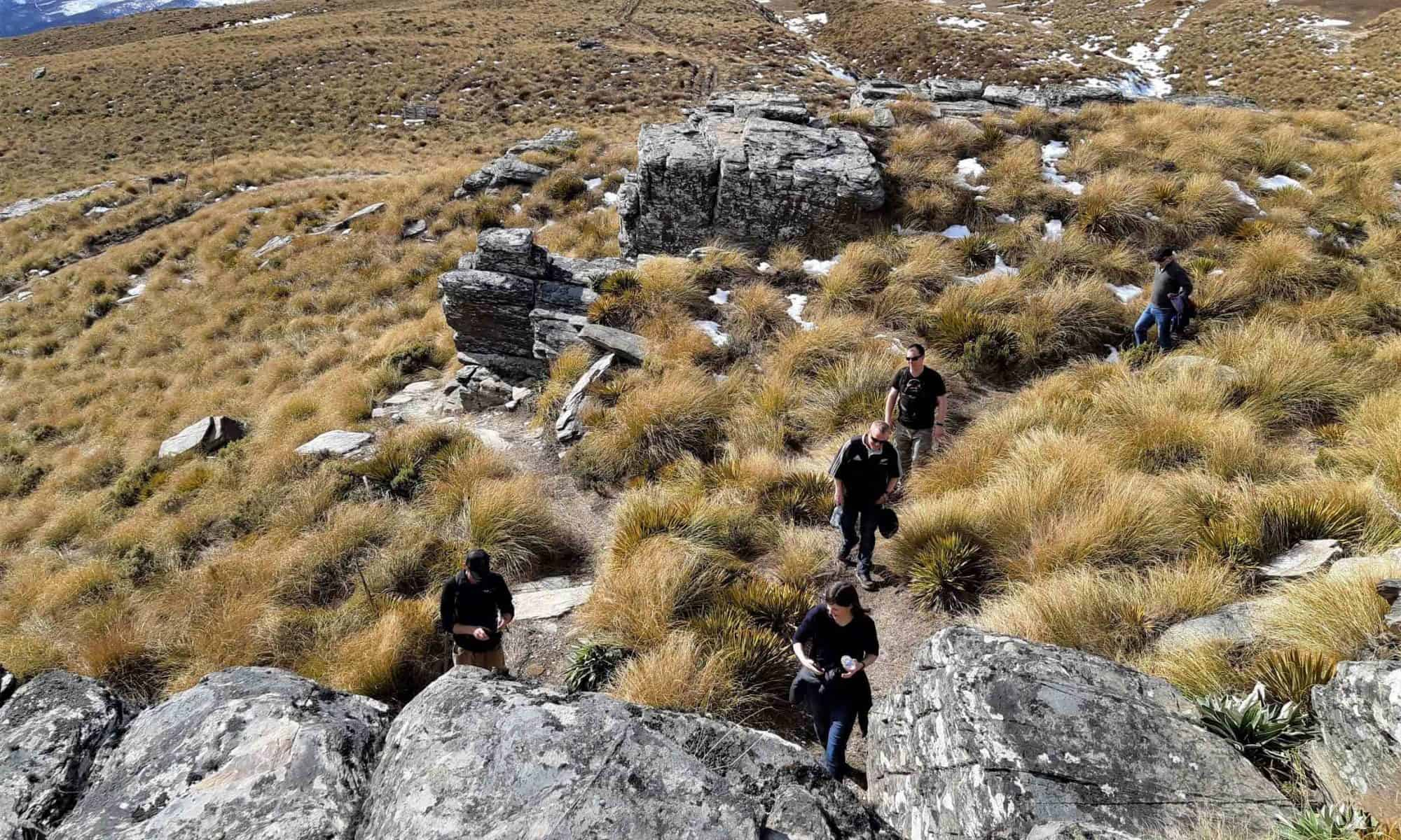 The team among tussocks and rocks at Welcome Rock.
