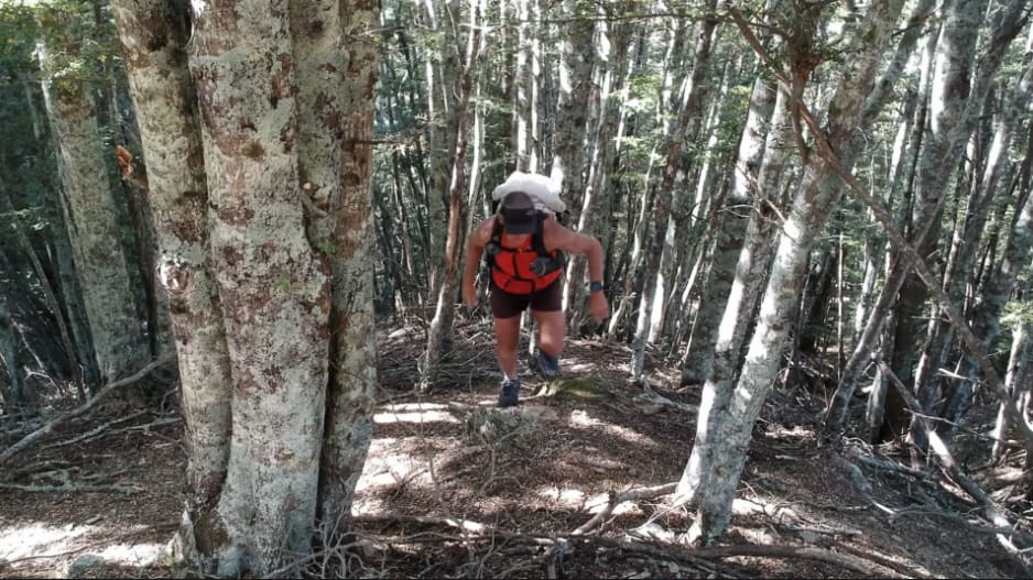 Scott Worthington scrambles up through native beech forest on Welcome Rock Trails.