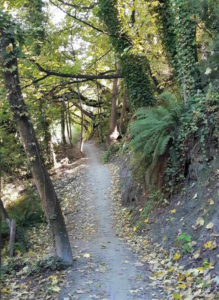 Bike Trail beside the Kawarau river.